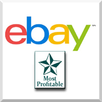 eBay - EcommerceBytes 2018 Sellers Choice for Most Profitable