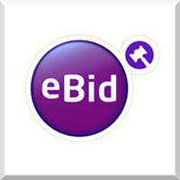 eBid - 2018 Sellers Choice Awards